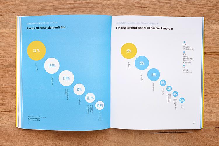 bilancio di coerenza 2015 bcc di capaccio paestum, infografica